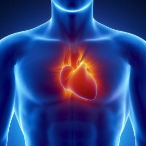 kardiologia-300x300-1.jpg