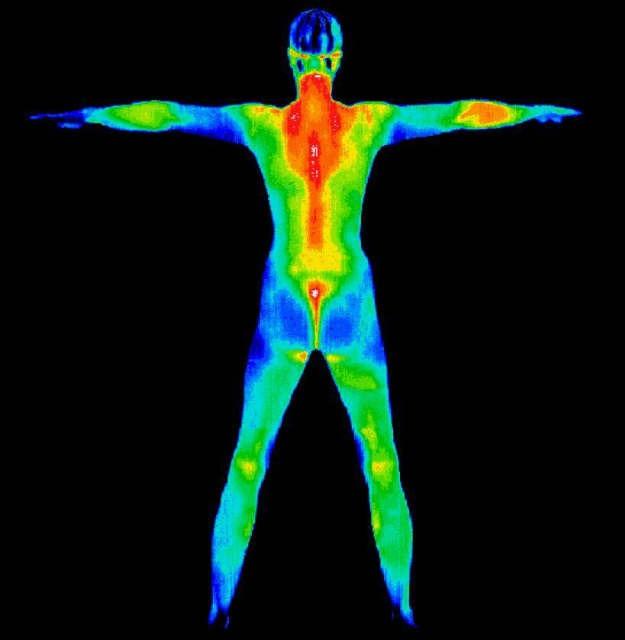 vysetrenie-ziarenie-termografia.jpg